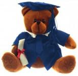 Abb. eines Teddybären mit Doktorhut am Kopf und Diplom in der Hand.